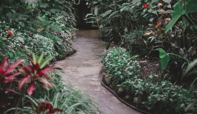 En säker trädgård är en rofylld trädgård